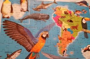 puzzlebuchtieratlas2